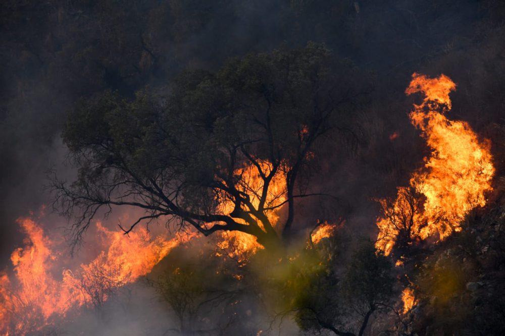 Arde Córdoba: crónica de un incendio anunciado