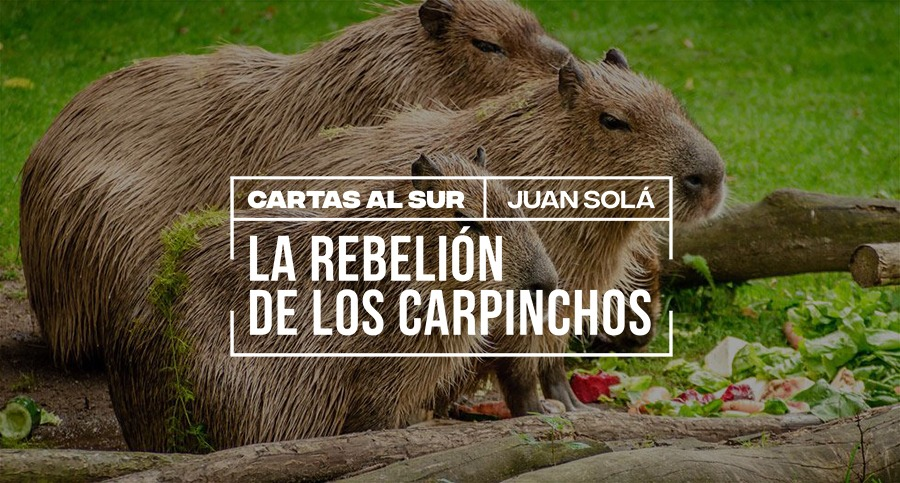 La rebelión de los carpinchos / Juan Solá