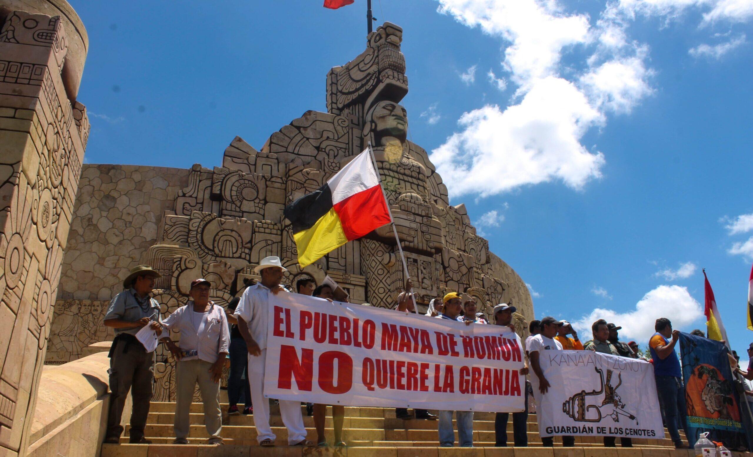 Península del desastre: pueblos mayas y las mega granjas que imitaría Argentina